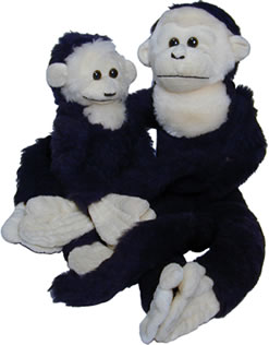 Capuchin stuffed monkeys.